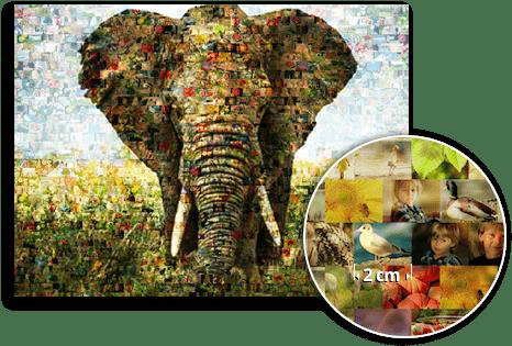 mosaico vista